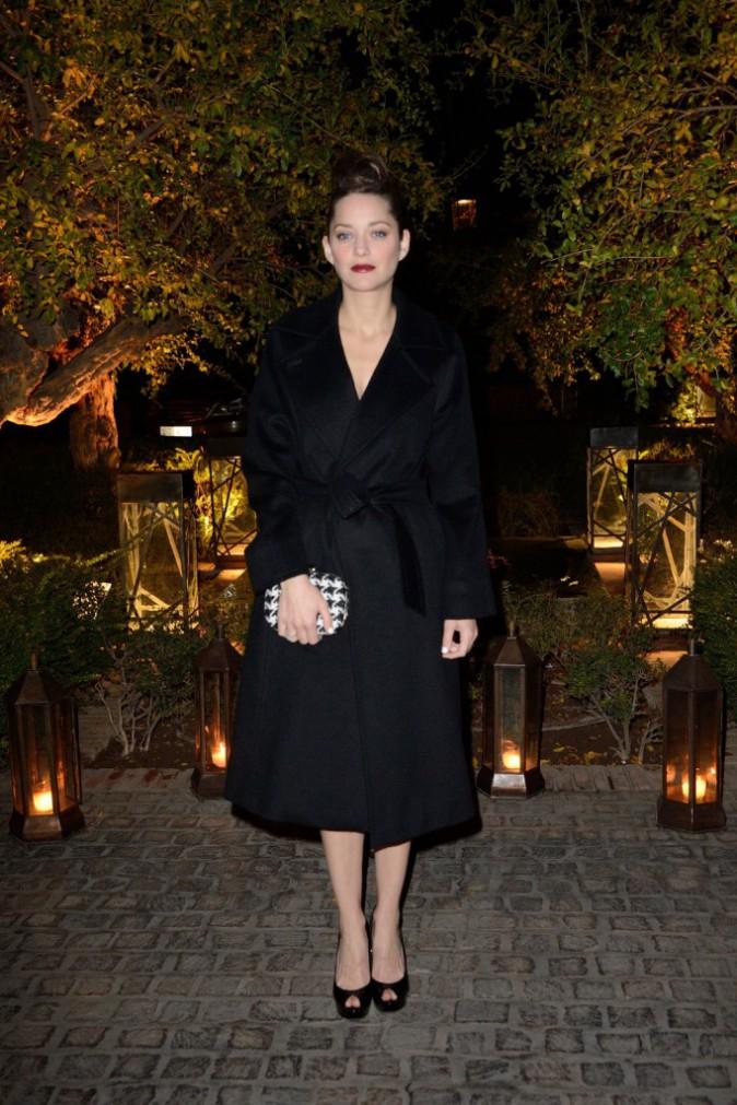 Marion Cotillard lors de la soirée Dior à Marrakech, le 1er décembre 2013.