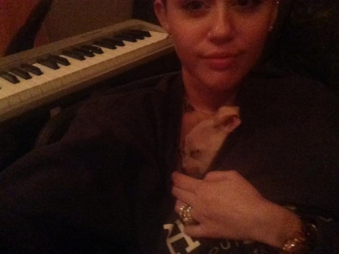 Miley Cyrus vous présente son nouveau chien, Bean !