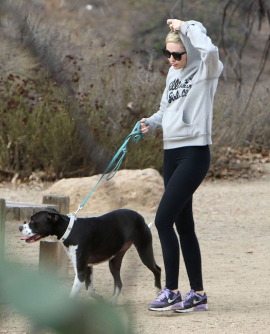 Miley Cyrus en balade avec son père et son chien à Los Angeles le 18 novembr 2014