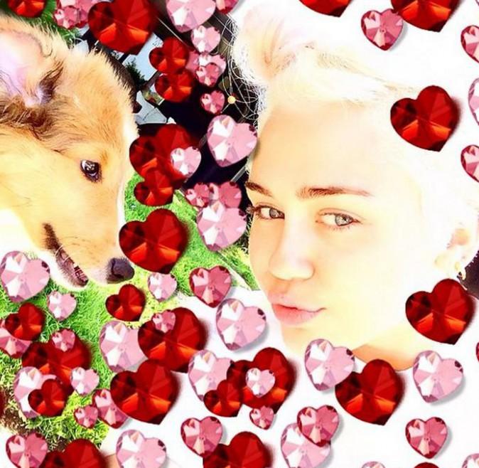 Miley Cyrus vous présente Emu !
