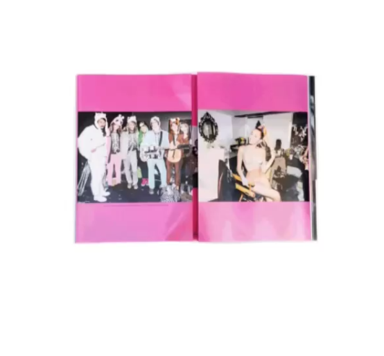 Miley Cyrus pour V Magazine