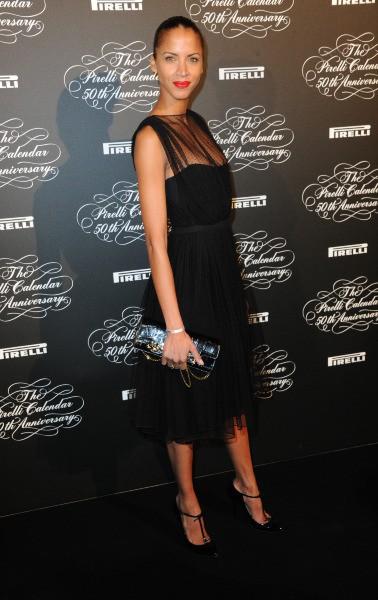 Noémie Lenoir lors de la soirée des 50 ans du calendrier Pirelli à Paris, le 30 janvier 2014.