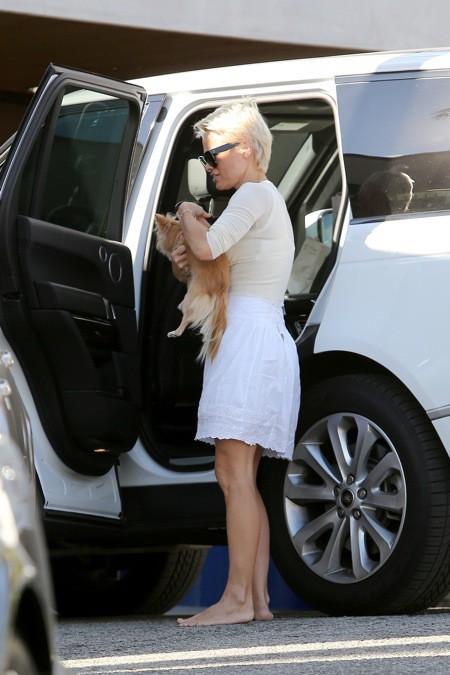 """Photos : Pamela Anderson : la """"jeune mariée"""" a pris un sacré coup de vieux !"""