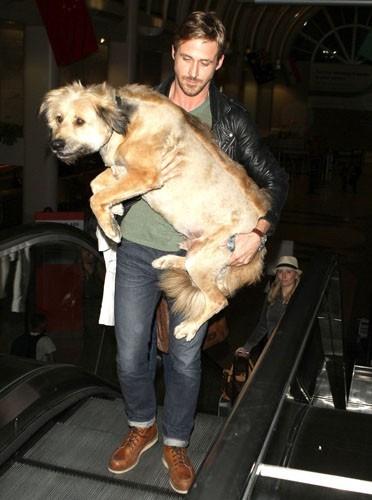 Ryan Gosling prêt à tout pour son fidèle chien