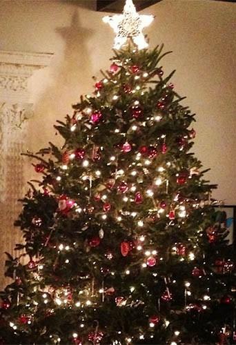 Le sapin de Noël de Miranda Kerr !