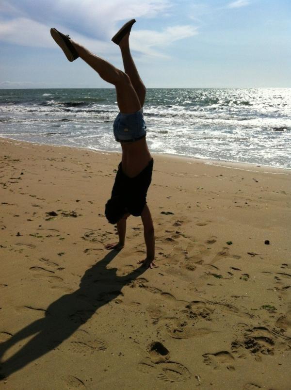 Le poirier sur la plage
