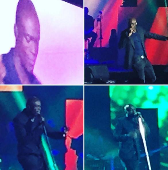 """Seal au concert """"Tout le monde chante contre le cancer"""" au Zénith de Paris le 01 décembre 2015"""
