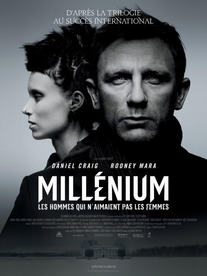 Millénium : les hommes qui n'aimaient pas les femmes, 7ème film le plus piraté de 2012