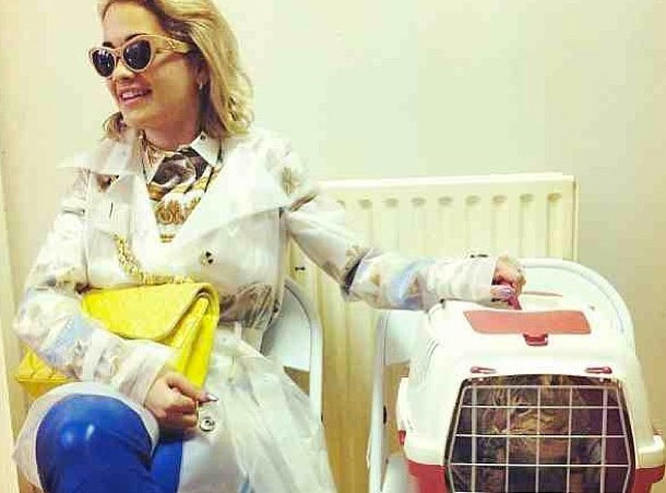 Rita Ora : rien n'est trop beau pour son chat !