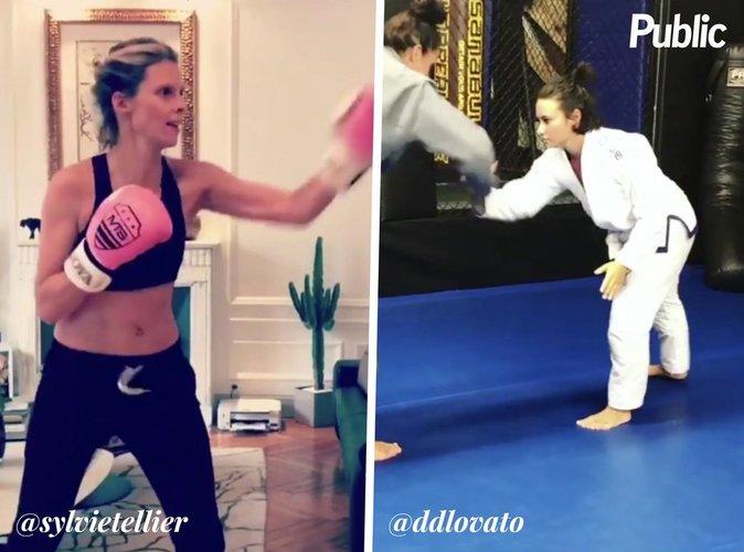 Sylvie Tellier, Demi Lovato : championnes du ring !