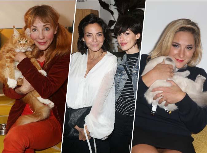 Julie Depardieu, Sandra Zeitoun de Matteis, Marilou Berry... pourquoi elles ont passé une nuit avec des chats ?